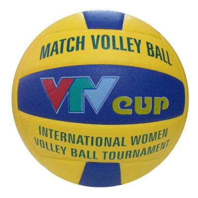 Bóng VTV Cup