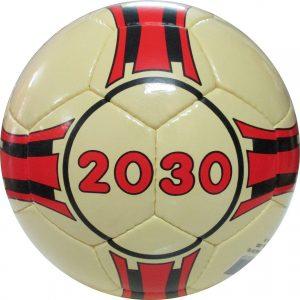 Futsal 2030 (khâu tay)